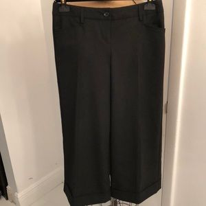 Express cropped wide leg pant